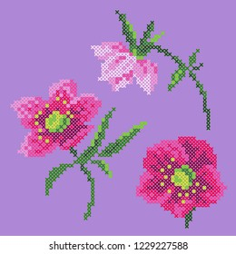 cross stitch anemone