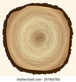 crossection of tree trunk, cut stump, wooden cut texture - vector illustration, you can easily change the color and size
