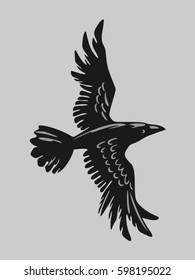 crow flying on the gray background