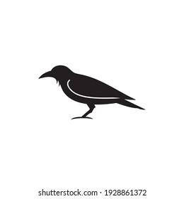 crow icon symbol sign vector