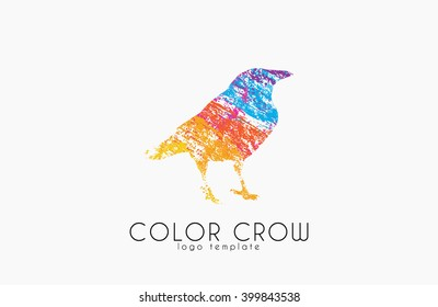 Crow logo. Color crow logo. Bird logo