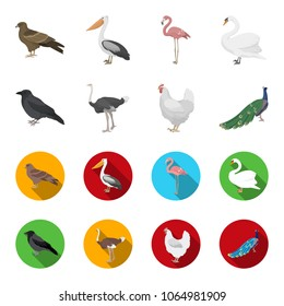 Crow, ostrich, chicken, peacock. Birds set collection icons in cartoon,flat style vector symbol stock illustration web.