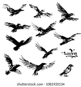 Crow Tattoo Images Stock Photos Vectors Shutterstock
