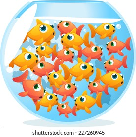 Crowded fishbowl full of fishes, with fifteen yellow and orange cute fishes vector illustration.
