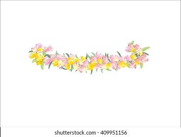 crown yellow  flowers isolated on white background,
