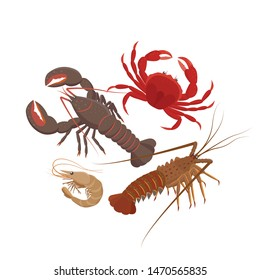 Crustaceans set of vector illustrations in flat design isolated on white background. Lobster, Spiny lobster, Shrimp, Сrab.