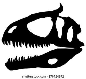 Cryolophosaurus, a Jurassic dinosaur discovered in Antarctica. Skull restoration illustration.