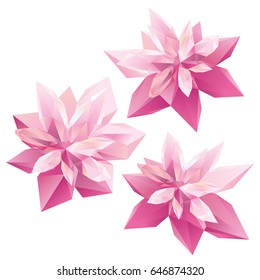 Crystal Pink flowers, polygon flowers, beautiful floral background for ads