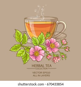 cup of dog rose tea on color background