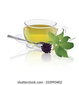 Cup of eleuthero tea
