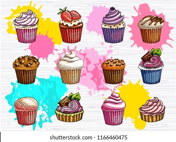 Cupcakes vector set isolated. Colorful cakes collection. Sweet cream, sugar icing, lunch, break time, strawberry, chocolate sprinkles muffin. Hand drawn vector