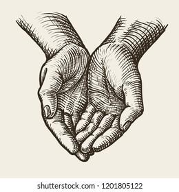 Cupped hands, folded arms. Sketch vintage vector illustration