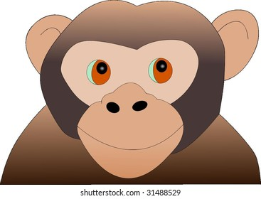 Curious Young Monkey Vector Drawing
