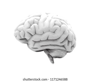 Curl engraving human brain side view vector illustration with black and white color