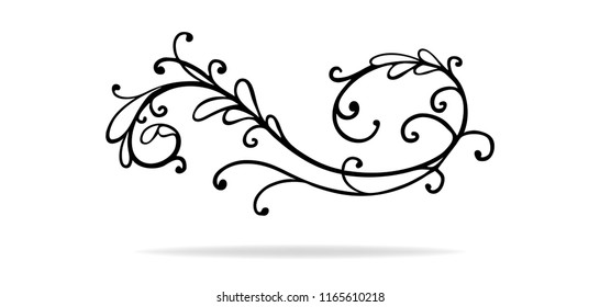 curl and swirl vector design element or paragraph divider that is hand drawn with floral leaves and flourishes, wedding design or Victorian accent