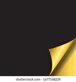 Curled corner. Easy editable Vector. Eps10 vector illustration