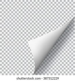Curled corner of paper with shadow on transparent background. Transparency only in vector format