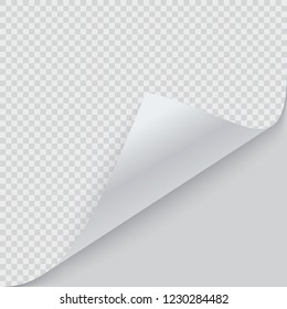 Curled corner of paper with shadow. Vector illustration