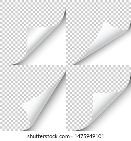 Curled page corner with shadow on transparent background collection. Blank sheet of paper. Vector illustration.