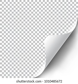 Curly corner mock up with transparent shadow. Vector illustration.