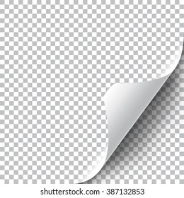 Curly Page Corner. Peeled sticker edge. Realistic illustration with transparent shadow.