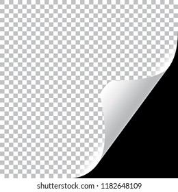 Curly Page Corner realistic illustration with transparent shadow. Vector illustration