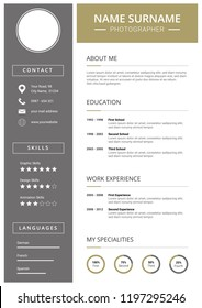 curriculum vitae modern and clean design cv template gold and silver elements icons