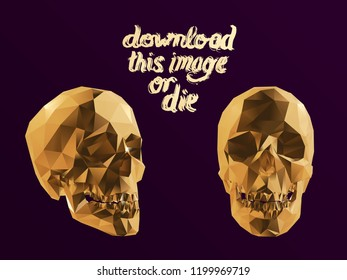 Cursed Gold Vector Low Poly Skull Polygonal 3D Rendering