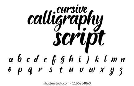 Cursive calligraphy script. Modern handwritten lettering font on white background