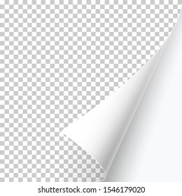 Curved page corner with shadow on a transparent background. Insert your images. Simple image insertion. Vector illustration.