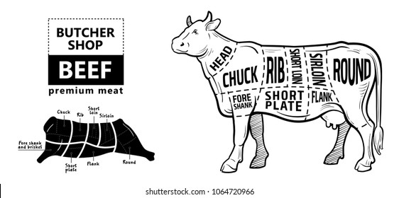 Cow diagram images stock photos vectors shutterstock cut of beef set poster butcher diagram cow vintage typographic hand drawn ccuart Gallery