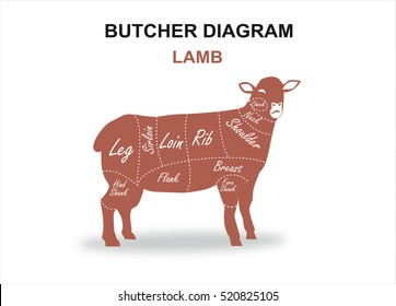 cut beef set poster butcher 260nw 520825105 basic cow internal organs beef cuts stock vector (royalty free