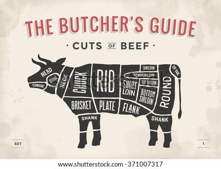 cut beef set poster butcher 450w 371007317 cut beef set poster butcher diagram stock vector (royalty free