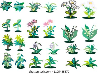 Cut collection of grass and flowers
