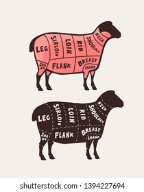 Cut of meat, lamb. Poster butcher diagram and scheme, vector illustration