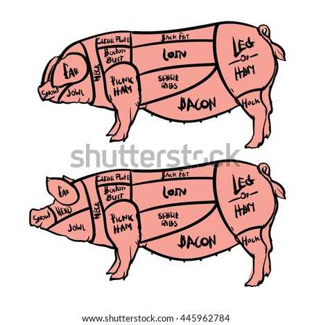 cut meat set hand drawn 450w 445962784 cut meat set hand drawn pig stock vector (royalty free) 445962784