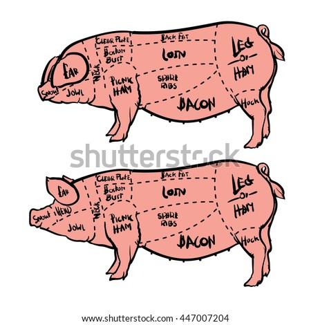 cut meat set hand drawn pig stock vector royalty free 447007204 rh shutterstock com Beef Bird Beef Bird