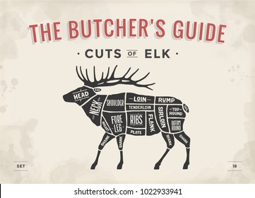 Cut of meat set. Poster Butcher diagram, scheme - Elk. Vintage typographic hand-drawn elk silhouette for butcher shop, restaurant menu, graphic design. Meat theme. Vector Illustration