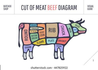 cut of meat set  poster butcher diagram and scheme - cow  colorful vintage  typographic