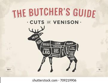 Cut of meat set. Poster Butcher diagram, scheme - Venison. Vintage typographic hand-drawn deer silhouette for butcher shop, restaurant menu, graphic design. Meat theme. Vector Illustration