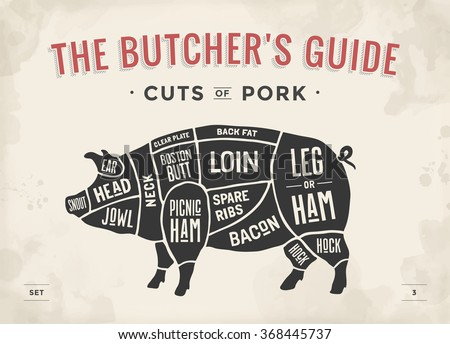 cut meat set poster butcher 450w 368445737 cut meat set poster butcher diagram stock vector (royalty free