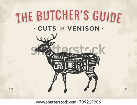 cut meat set poster butcher 450w 709219906 cut meat set poster butcher diagram stock vector (royalty free