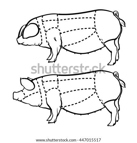 Cut Pig Set Hand Drawn Outline Stock Vector Royalty Free 447015517