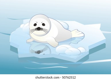 cute adorable white young seal on ice floe, vector editable