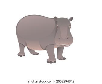 Cute adult Hippopotamus big mammal cartoon animal vector illustration
