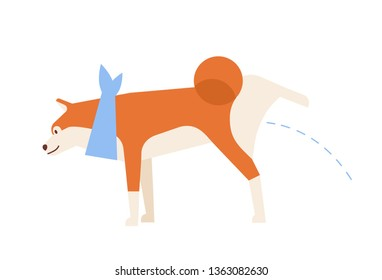 Cute Akita Inu peeing or urinating during walk. Charming pissing purebred dog or puppy isolated on white background. Daily activity of domestic animal or pet. Flat cartoon vector illustration.