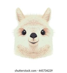 Cute alpaca illustration