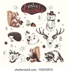 Cute Animal drawings set. vector hand drawn sketches.squirrel; raccoon; hedgehog; foxes; deer;hedgehog