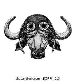 Cute animal wearing motorcycle, aviator helmet Buffalo, bull, ox Hand drawn illustration for tattoo, emblem, badge, logo, patch, t-shirt