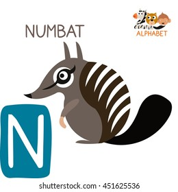 Cute Animal Zoo Alphabet. Letter N for Numbat. Fun teaching aids for Kids